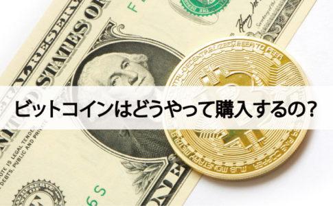 マイニングシティに支払うビットコインはどうやって購入するの?